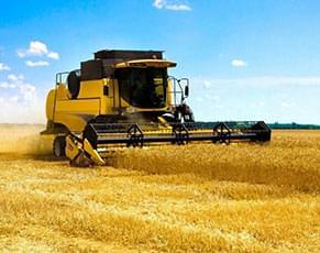 Сельское хозяйство<br>и мелиорация